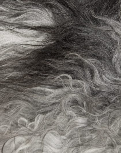 Long Wool Icelandic Natural Grey Sheepskin Rug - Close