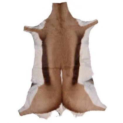Grade A Luxury Medium Springbok Skin Rug-0