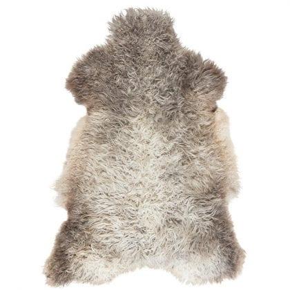 Long Haired Sheepskin From Island of Gotland by Shepherd of Sweden-0