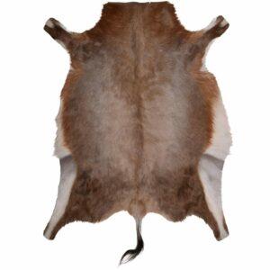 Grade A Luxury Blesbok Skin Rug - Hide - Pelt - Main
